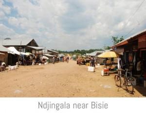 Ndjingala near Bisie-1